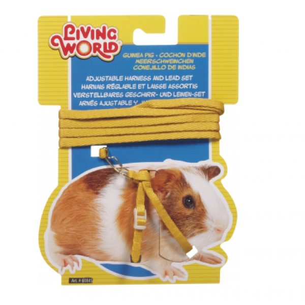 Guinea Pig Harness Yellow