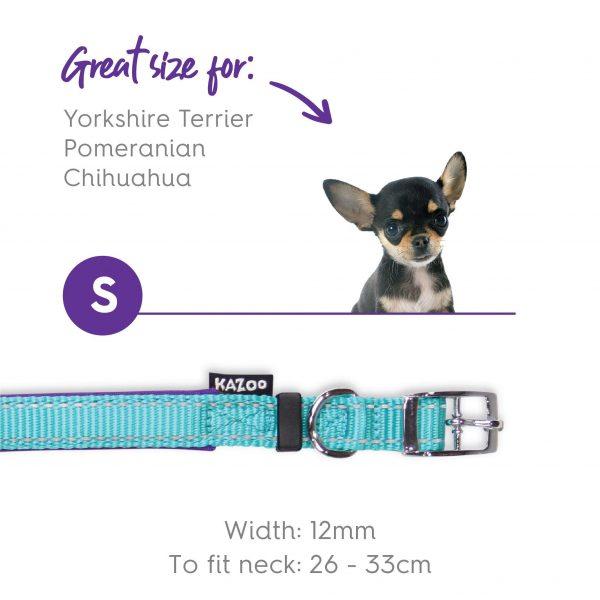 Kazoo Active Collar Aqua Purple 26 33