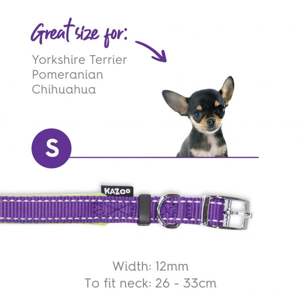 Kazoo Active Collar Purple Lime 26 33