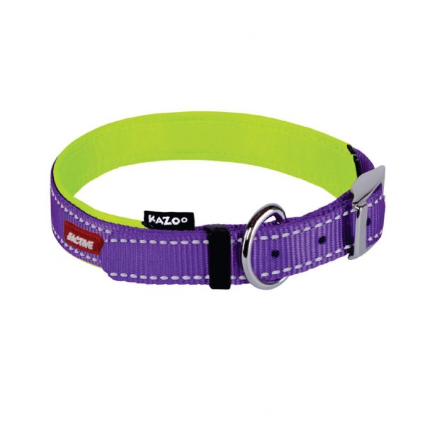 Kazoo Active Collar Purple Lime