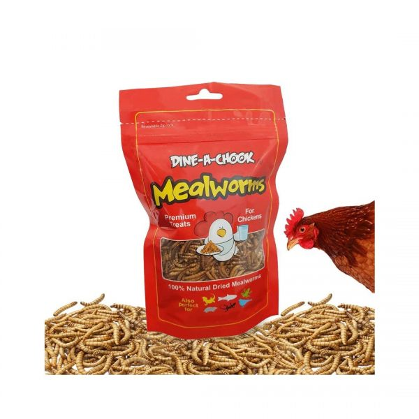 Mealworms 80g