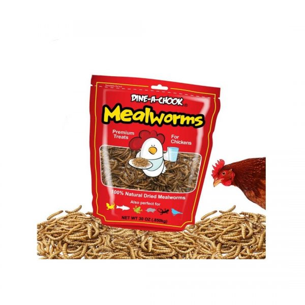 Mealworms 850g